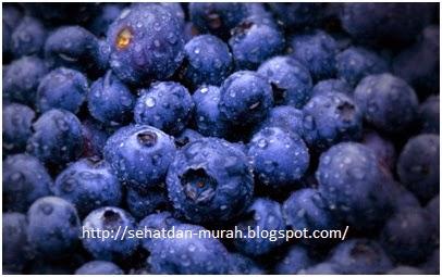 Sejuta manfaat blueberry