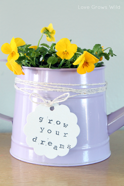 Watering Can Planter by Love Grows Wild for Occasionally Crafty #spring #diy #flowers #grow