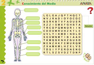 http://www.ceipjuanherreraalcausa.es/Recursosdidacticos/SEGUNDO/datos/03_cmedio/03_Recursos/actividades/01/act3.htm
