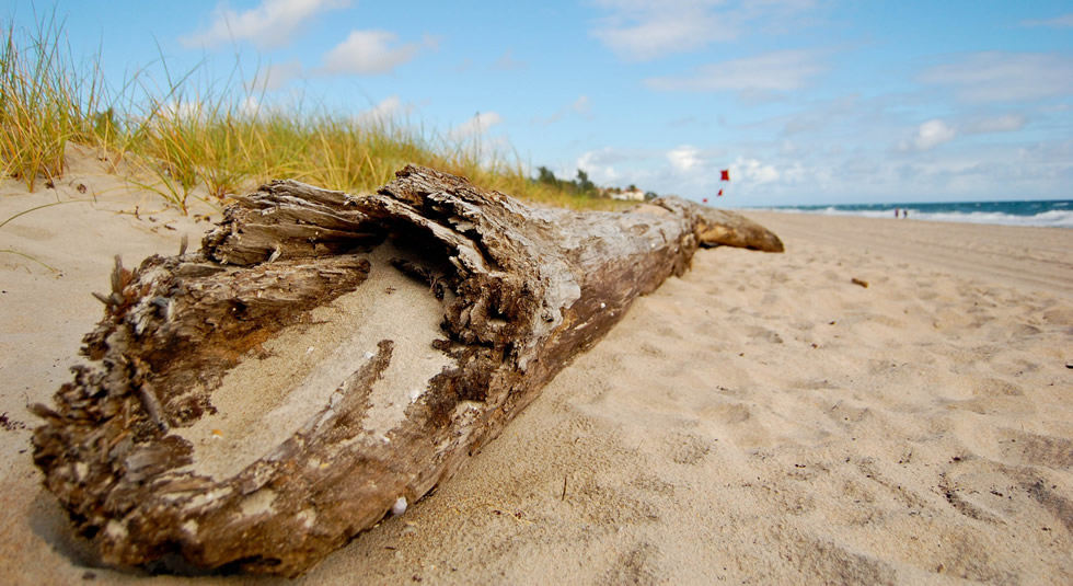 Added to THE LIST Delray Beach receives eTN Award eTurboNews eTN