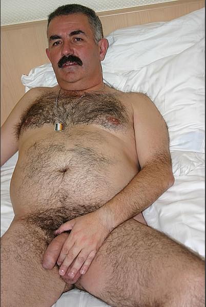Gay orient bear turkish