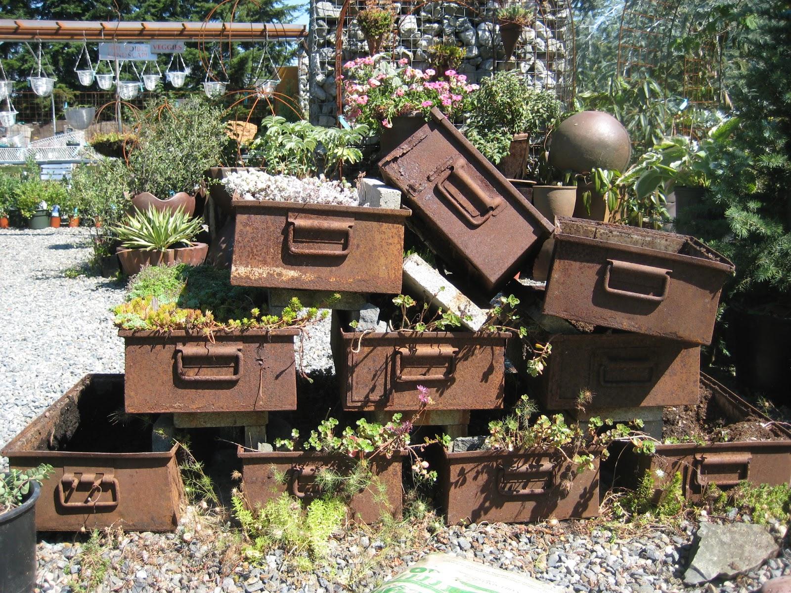 A Next Generation Gardener: Vashon Island Garden and Nursery Excursion
