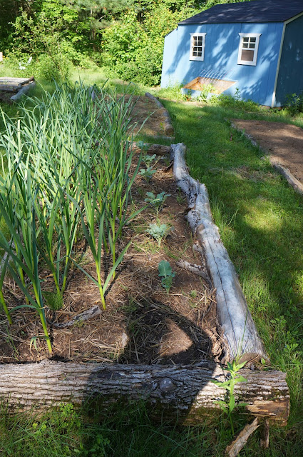The backyard farming connection planning your homestead for Does homesteading still exist