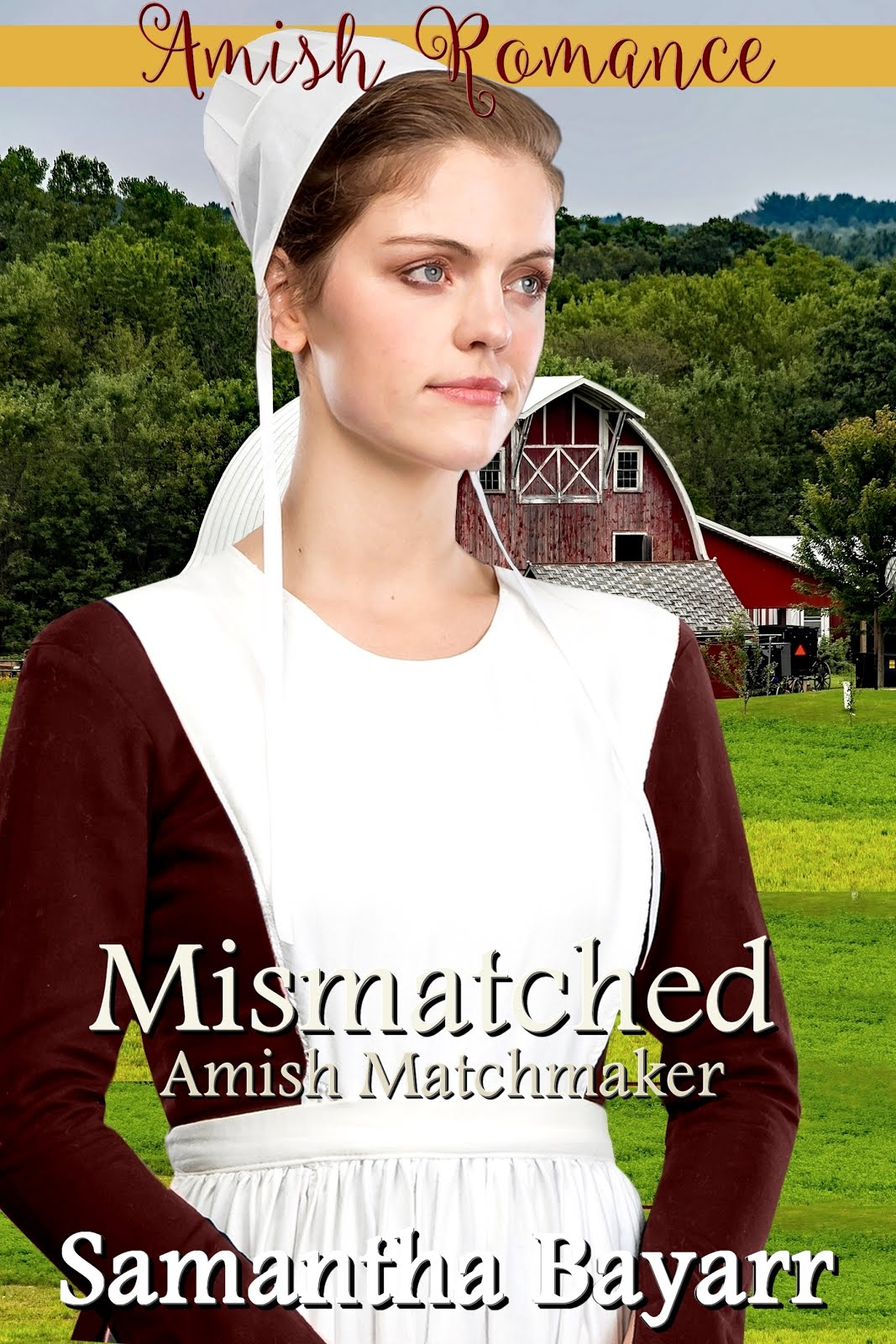 Mismatched: The Amish Matchmaker