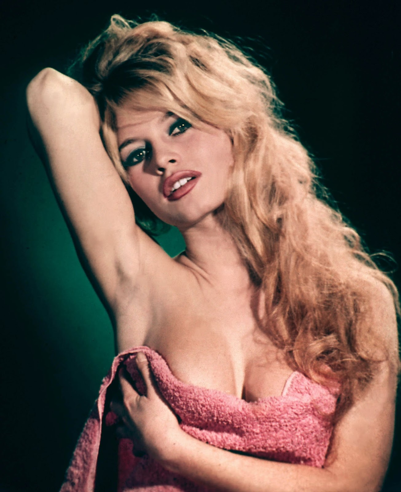 mahound's paradise: brigitte bardot on trial once again for
