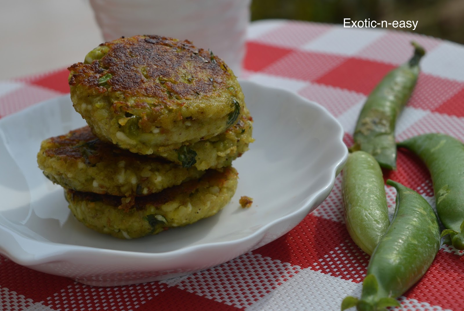 cottage cheese paneer exotic indian recipes