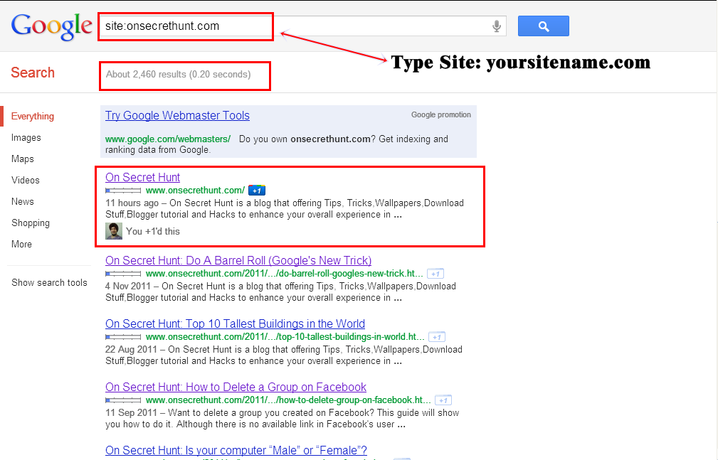 Google+On+Secret+Hunt Check If Your Blog/Website Is Indexed By Google Or Not