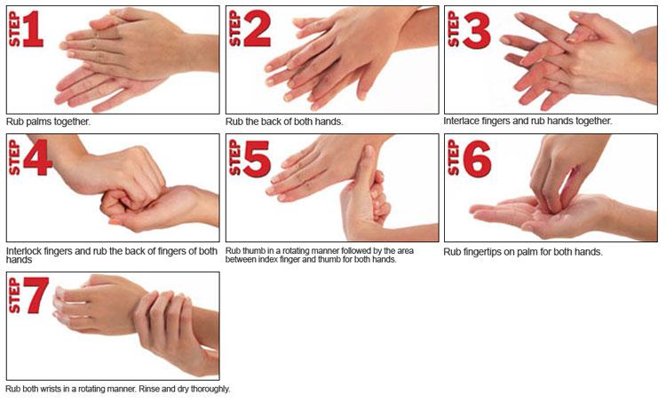 Hand Sanitizer sebagai anti bakteri
