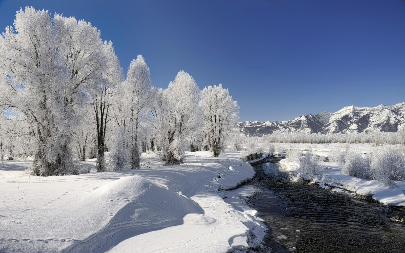 Winter Wallpaper Photos Beautiful Winter Wallpapers Beauty of Winter season Nature