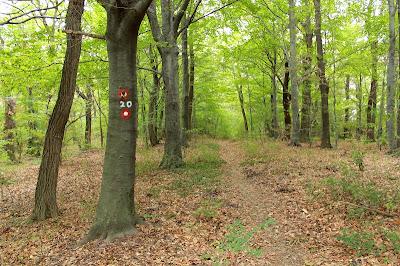 Planinarska staza 20