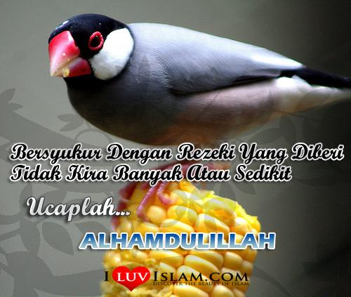 Ucapkanlah Alhamdulillah