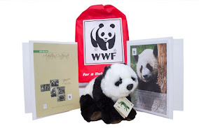 Do Something Beary Different & Incredibly Meaningful This Christmas 2016