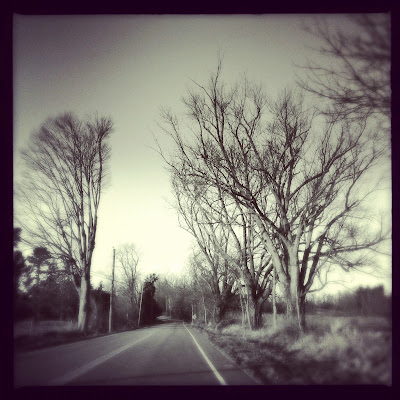 photograph by karri allrich, rural road