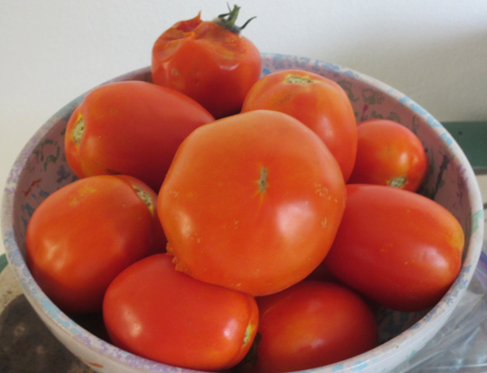 how to get seeds out of tomatoes for sauce