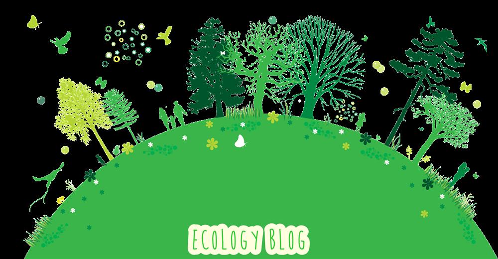 Ecology Blog