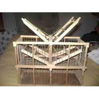 Model Kandang Jebak Novita Bird Farm