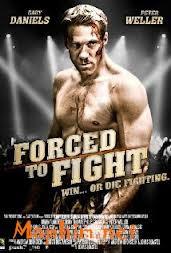 Đấu hoặc Chết - Forced to Fight 2011