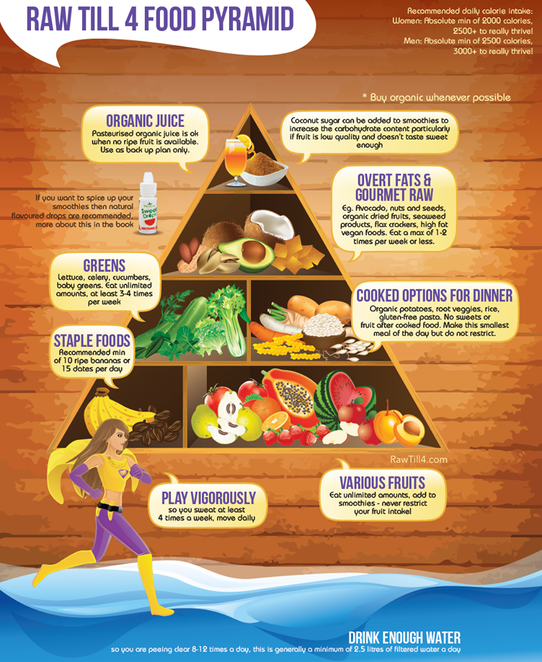 the healthy hoff raw till 4 food pyramid