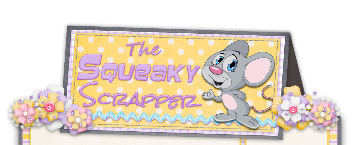 The Squeaky Scrapper