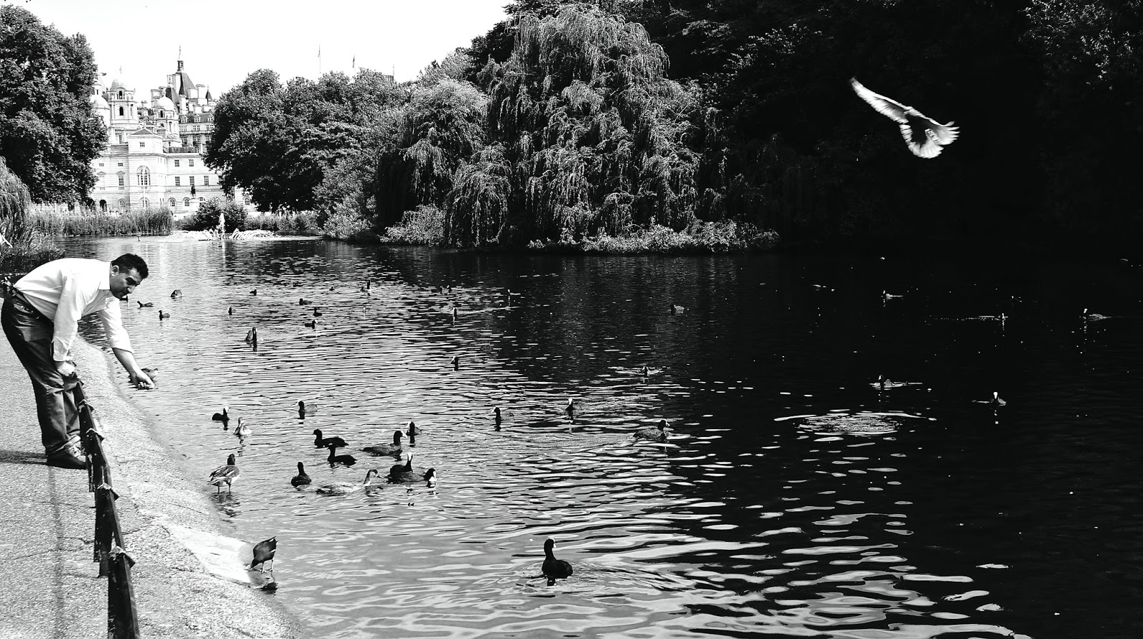 St James's Park Lake the oldest Royal Park London photography www.lexieblush.co.uk
