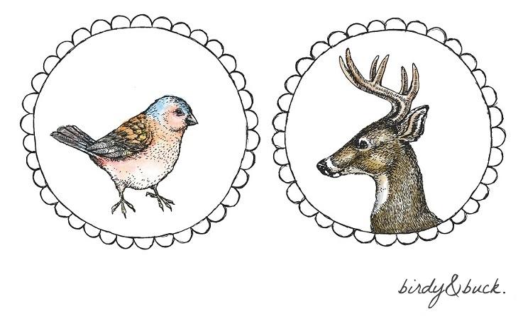 birdy&buck