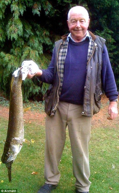 Ikan pike makan ikan kap besar hingga mati tercekik