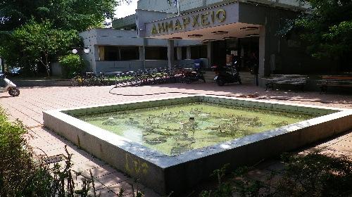 Κουνούπια σε στάσιμα νερά στο συντριβάνι του δημαρχείου