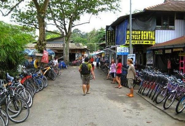 bersepeda di Pulau Ubin