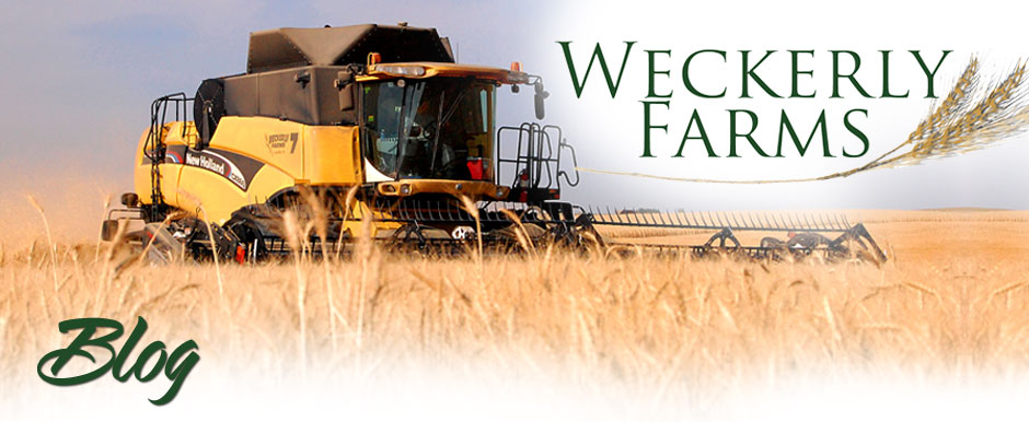 Weckerly Farms