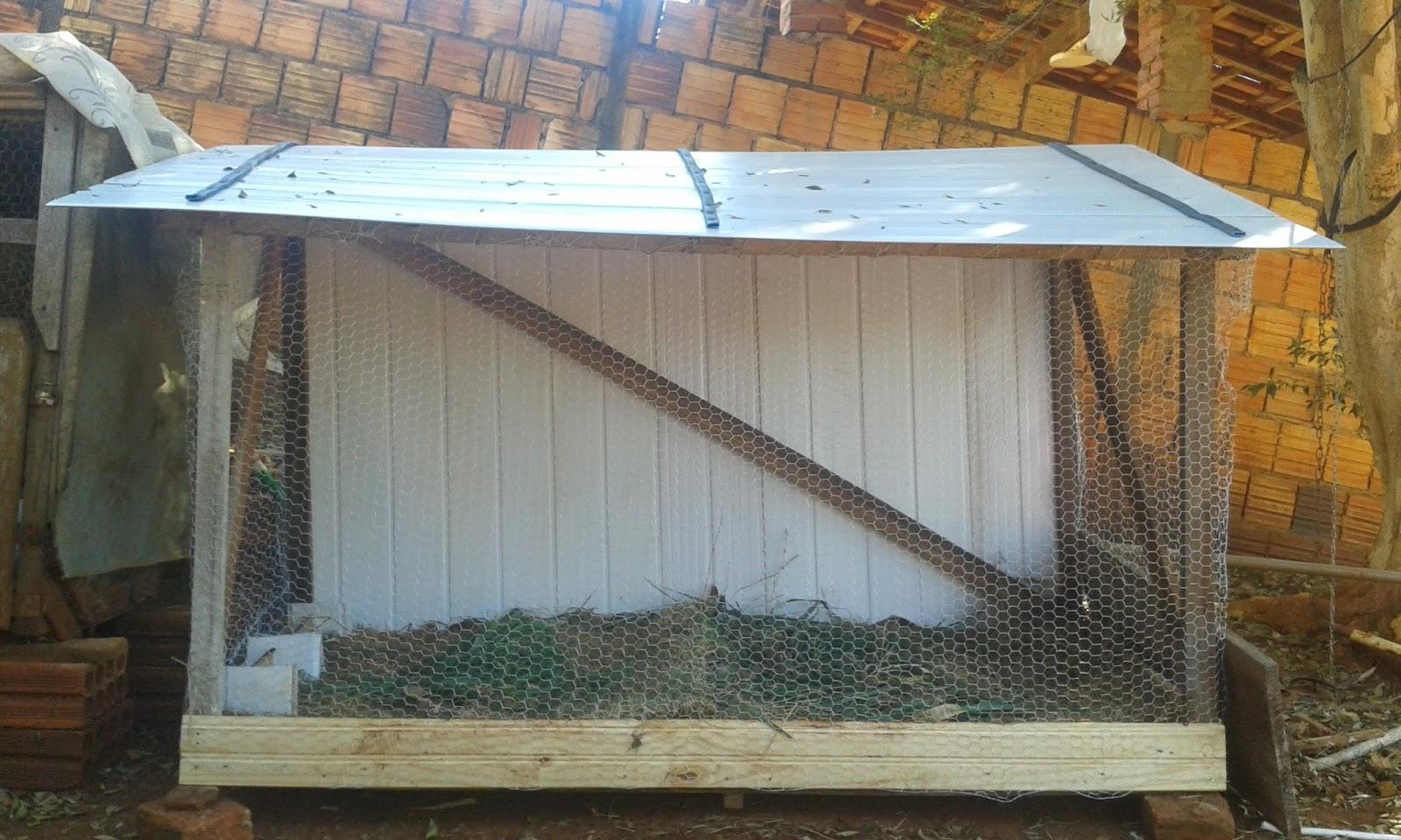 Como iniciar uma cria o de codornas franguinho caipira - Piscina los periquitos ...