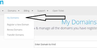 Cara Membuat Domain Gratisan Dot Tk 8