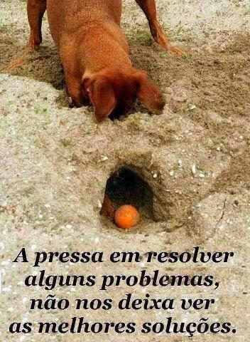 Planejamento é uma solução ...