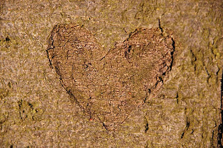Wooden Heart (c) FreeFoto.com