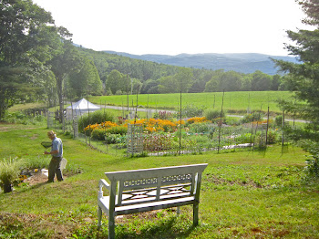 Lovely Mountain Views from many spots.  Seating scattered around the property for your pleasure.