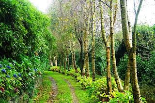 Luarca, Jardines de la Fonte Baixa, sendero