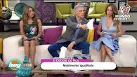 DEBATE MATRIMONIO IGUALITARIO EN EL PROGRAMA HOY DE TELEVISA