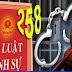Điều 258 Bộ Luật Hình Sự & Lợi Ích Nhà Nước