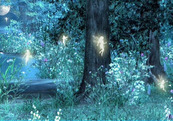 Night With Her Train Of Stars Night Magic