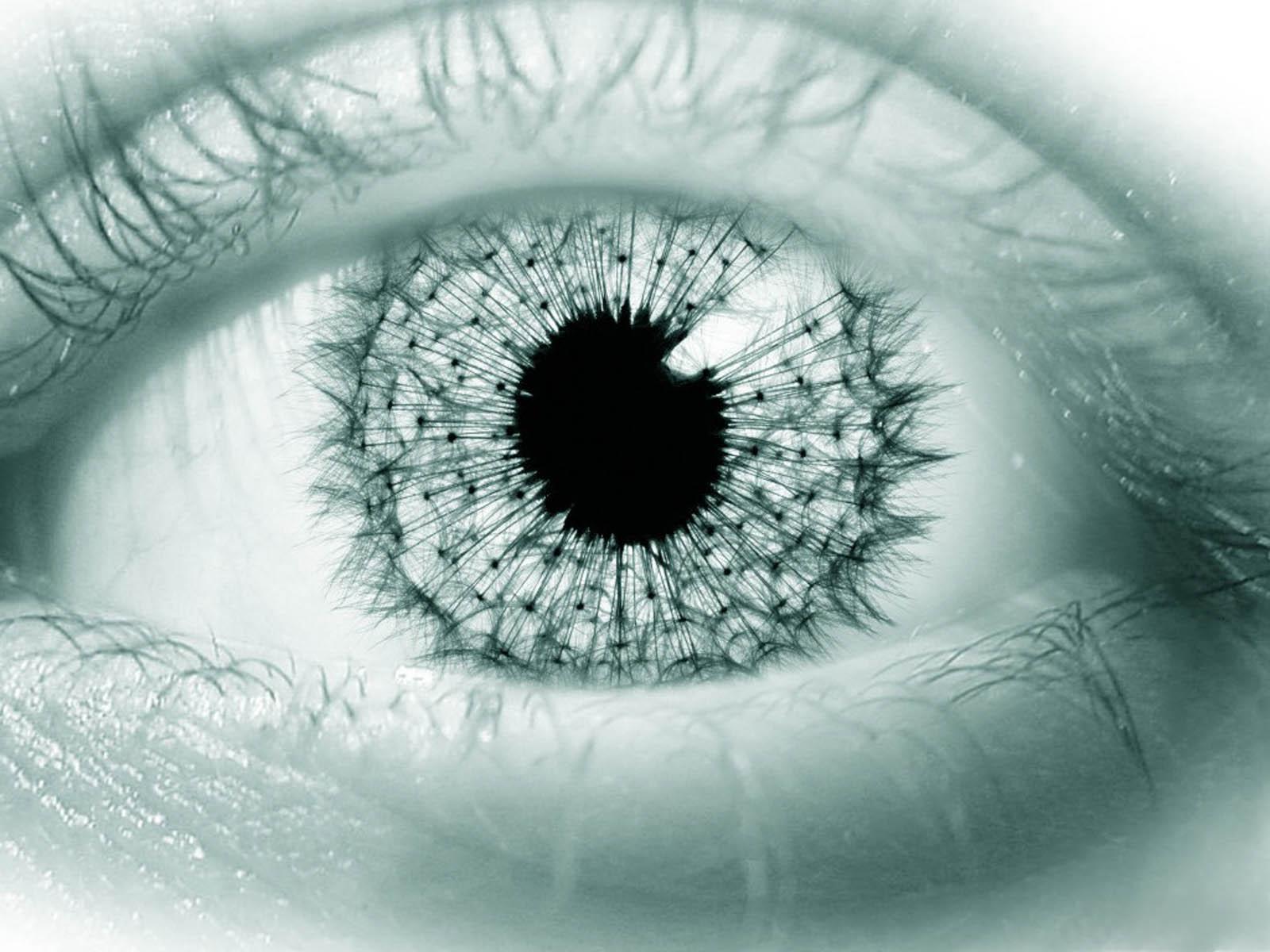 wallpaper 3D Eye Wallpapers