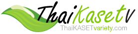 thaikaset Variety
