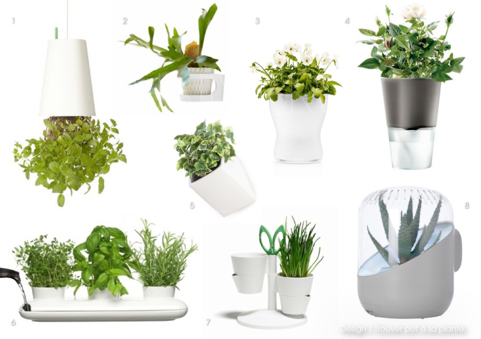 Pot design pour plante interieur conceptions de maison for Plante interieur