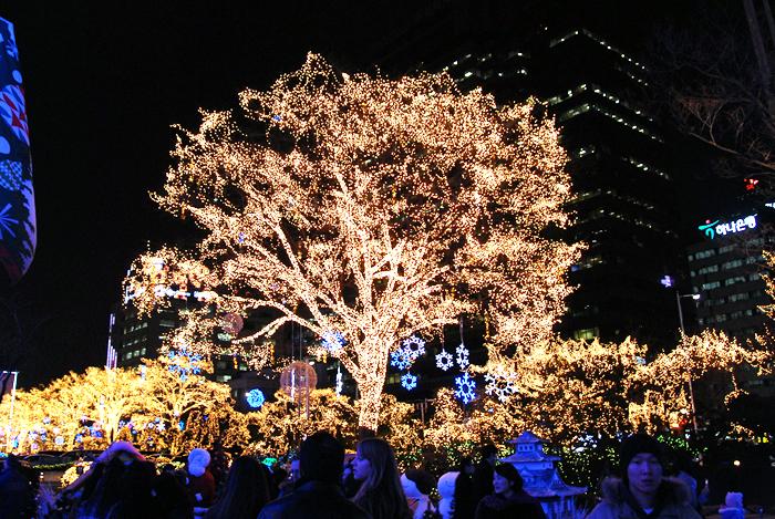 Yeni Yıl, Christmas, Korea, Ağaç,Tree