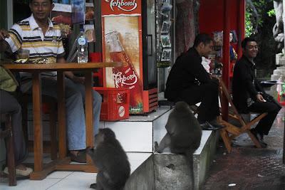 ubud- Bali