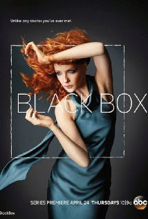 Download - Black Box S01E01 - HDTV + RMVB Legendado