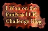 Winner PanPastel