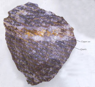 RICH VEIN Larger concentrations of ore occur in veins, but most high-grade ores have been found and in many cases worked out. Ores in veins are usually worked by deep mining. This vein in altered granite contains ;.chalcopyrite and quartz.