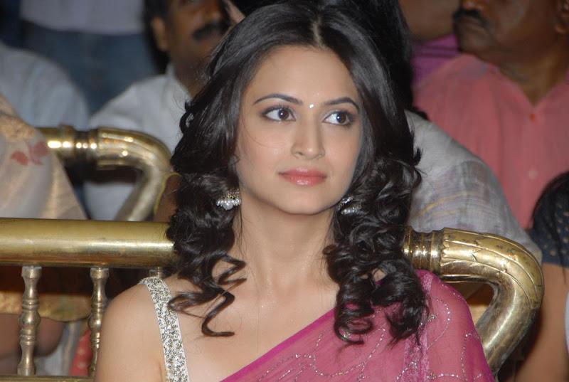 Pawan Kalyans Upcoming Actress Kriti Kharbanda In Hot Saree Stills Photos hot photos