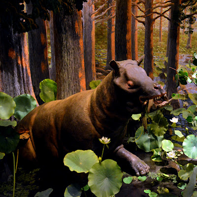Extreme Mammals,  Fernbank Museum of Natural History