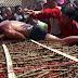 Horror : Ritual Menggulingkan Diri Diatas Katil Duri