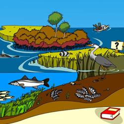 Contoh Keragaman Ekosistem